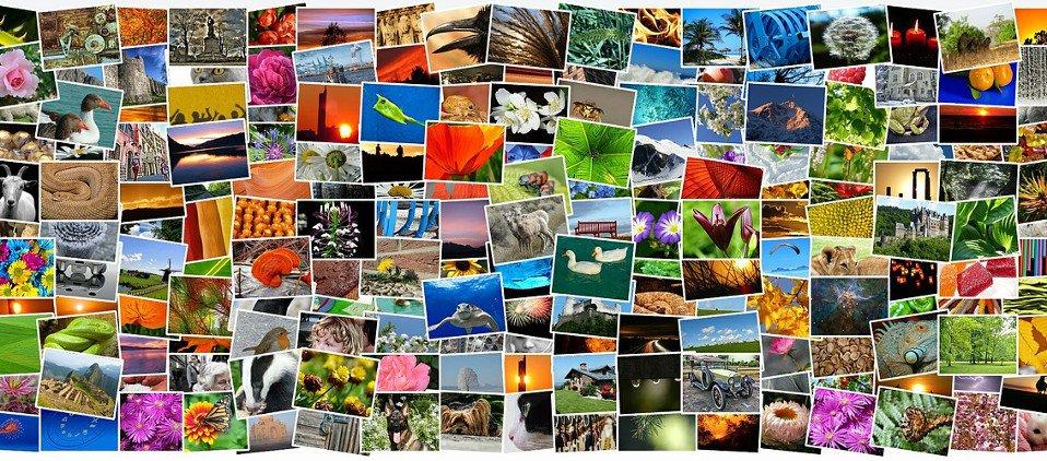 5 Plugins para insertar imágenes con Creative Commons en tu blog en WordPress