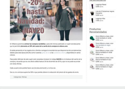 Diseño web: Wikons - blog